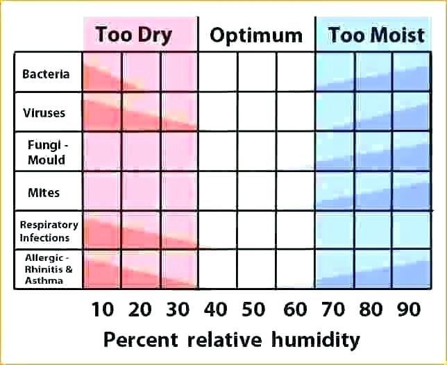 What Should be The Right Level of Humidity in Winter?