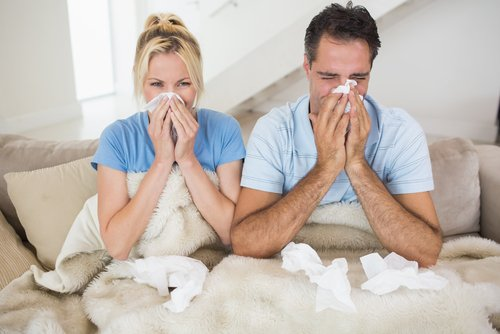How to Protect Yourself Against HVAC Related Allergies?